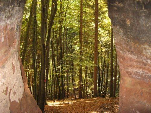 Eine Höhle mit Ausblick. Wanderung bei Trier in der Eifel. Bäche, Wasserfälle, Herbstwald und sagenumwobene Höhlen.