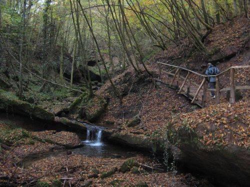 Ein Mini Wasserfall im Wald. Wanderung bei Trier in der Eifel. Bäche, Wasserfälle, Herbstwald und sagenumwobene Höhlen.