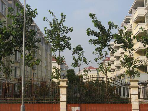 Moderne Wohnsiedlung. Mein Arbeitsweg durch Shanghai 上海, China 中国