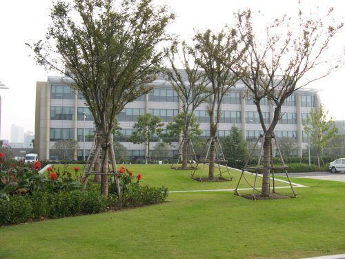 Der Campus. Mein erster Arbeitstag im Shanghai Caohejing Hi-Tech Park 漕河泾开发区