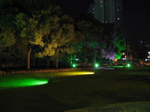 Angestrahlte Bäume. People's Square 人民广场 bei Nacht, Shanghai 上海, China 中国