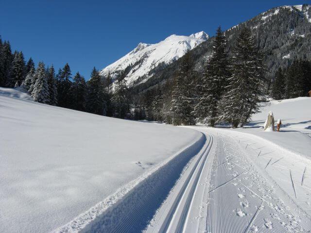 Loipe im Wald. Winterurlaub und Skifahren in Kappl und Ischgl.