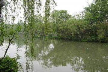 Der See. Dienstreise nach Yangzhou 扬州市, Slender West Lake 瘦西湖), China.