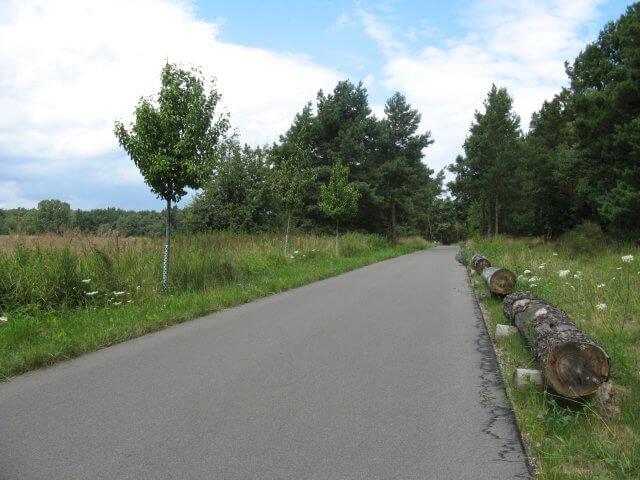 Viel Platz und keine Anstiege. Der Fläming-Skate in der Umgebung von Jüterbog.