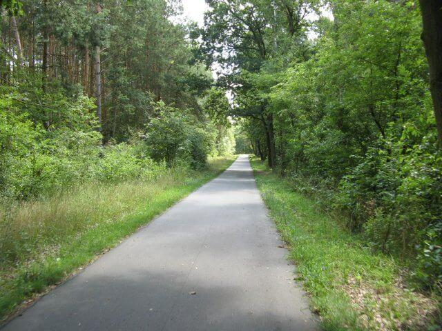 Ausgezeichneter Zustand der Wege. Der Fläming-Skate in der Umgebung von Jüterbog.