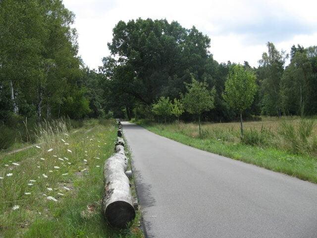 Der Fläming-Skate in der Umgebung von Jüterbog.