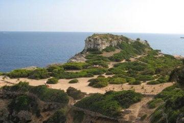 Felsen am Meer. Wanderungen in der Bergwelt Mallorcas.