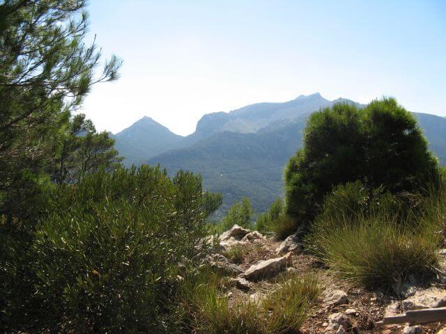 Ausblick vom Gipfel. Wanderungen in der Bergwelt Mallorcas.