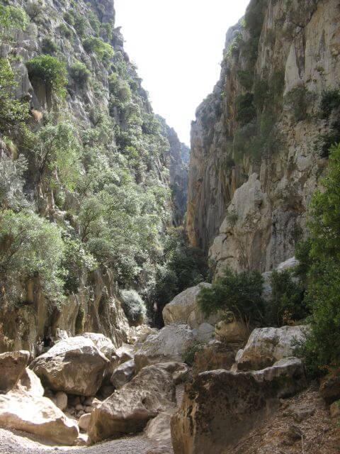 Inmitten der Sa Calobra Schlucht. Wanderungen in der Bergwelt Mallorcas.
