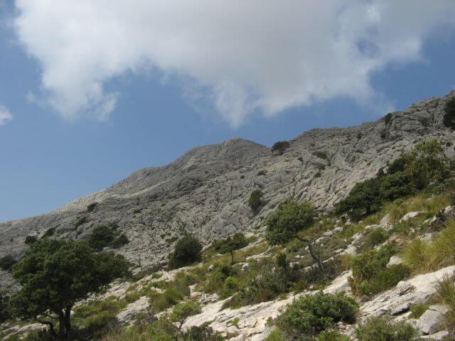 Auf dem Weg zum Puig de Massanella. Wanderungen in der Bergwelt Mallorcas.