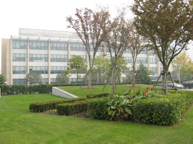 Neue Bäume. Shanghai Caohejing Hi-Tech Park 漕河泾开发区 - der Philips Campus in Shanghai 上海