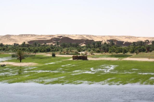 Fruchtbares Ufer des Nils. Nilkreuzfahrt und Badeurlaub am Roten Meer in Ägypten.