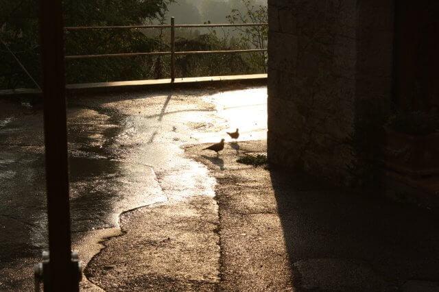 Dorf bei Regen. Toskana-Landschaft, Italien