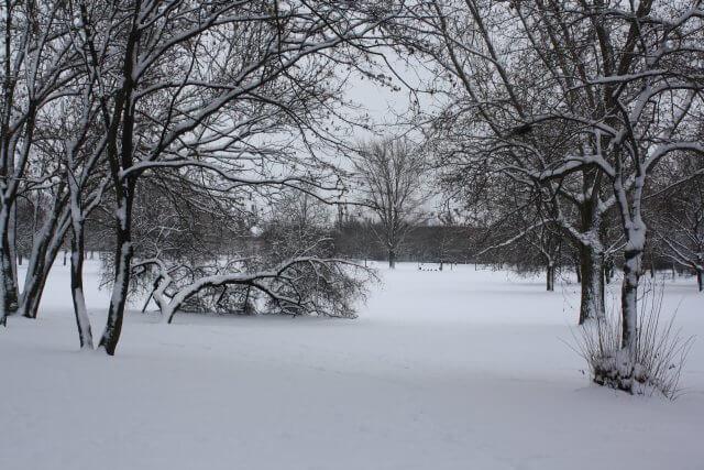 Winter in Erfurt. Schnee im Nordpark.