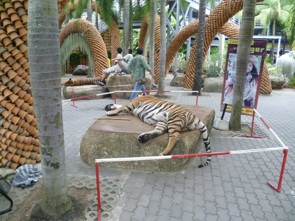 Schlafende Tiger im Nong Nooch - tropical botanical garden, Thailand.