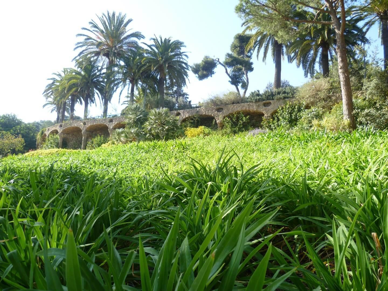 Saftiges Grün im Park Güell. Wochenendtrip zu Gaudi nach Barcelona, Spanien.