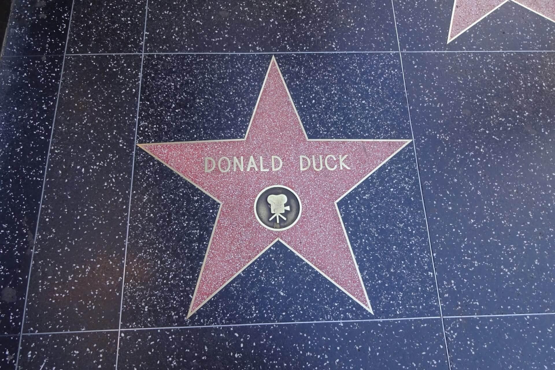 Stern auf dem Walk of Fame. Bilder und Eindrücke aus Los Angeles und Hollywood, Kalifornien, USA.