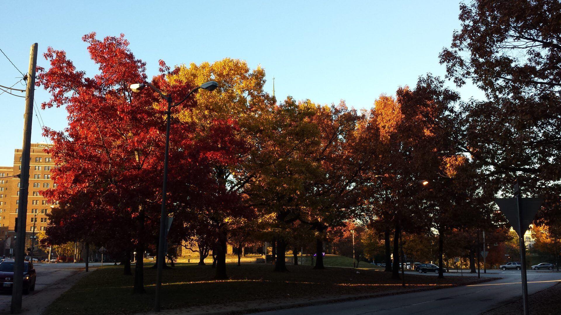 Herbst. Bilder und Eindrücke aus Cleveland, Ohio, United States.