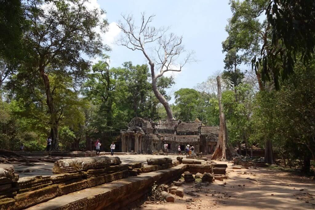 Ta Prohm, der Tomb Raider Tempel. Bilder und Eindrücke aus Kambodscha - Cambodia, Siem Reap, Angkor Wat, Sihanoukville und Phnom Penh.