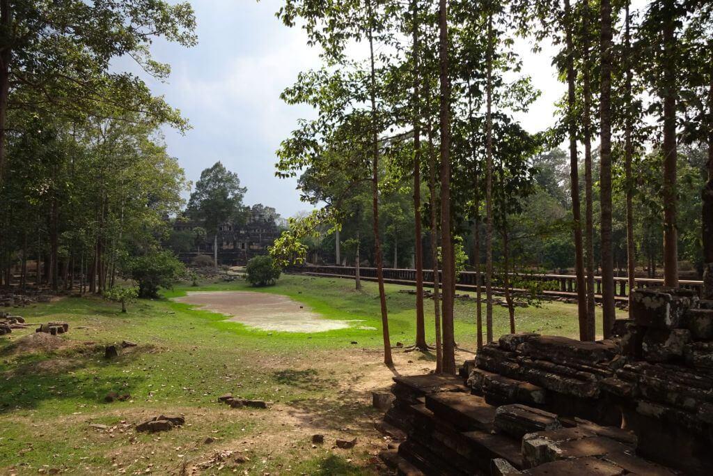 Angkor Thom Vegetation. Bilder und Eindrücke aus Kambodscha - Cambodia, Siem Reap, Angkor Wat, Sihanoukville und Phnom Penh.