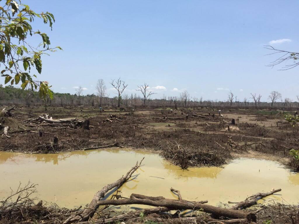 Neak Pean schmutziger Tümpel. Bilder und Eindrücke aus Kambodscha - Cambodia, Siem Reap, Angkor Wat, Sihanoukville und Phnom Penh.